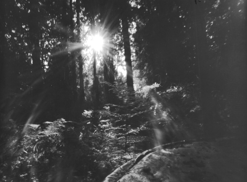 5 minute exposure film